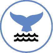 Espèces protégées suivez la vague
